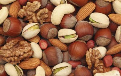 Le proprietà dei frutti secchi: mangiamone di più!