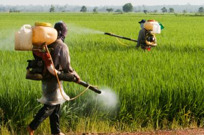 I pesticidi e il loro impatto sulla salute, un incontro a San Lazzaro