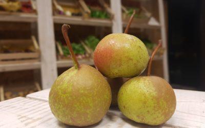 La pera volpina, regina dei frutti dimenticati