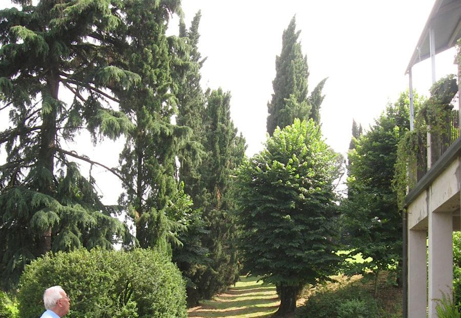 Naturalmente Imola, una festa per il verde e la floricoltura